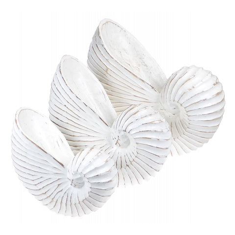 Set of 3 White Wooden Carved Nautilus Shells - Sea Shells Wooden Decoration - Paradise Crow -  Natural Design & Interiors