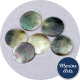 Polished Black Pearl Oyster Counter Discs - Sea Shells - Paradise Crow -  Natural Design & Interiors