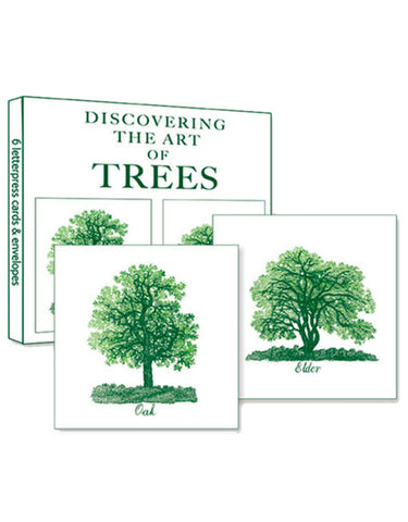 The Art of Trees - 6 x Greeting Cards - Natural History - Paradise Crow -  Natural Design & Interiors
