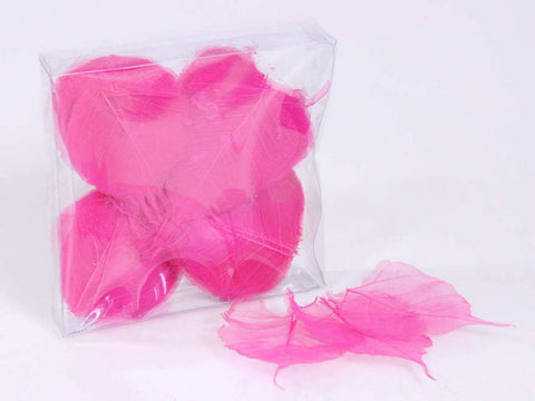 Pink Skeleton Leave -   Natural Floral Supplies - Paradise Crow -  Natural Design & Interiors