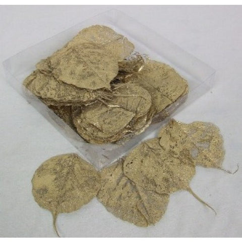 Gold Coloured Skeleton Leaves -   Natural Floral Supplies - Skeleton Leaf - Paradise Crow -  Natural Design & Interiors