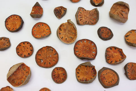 10 x Bellani Pumpkin  Slices 4-6cm - Natural Floral Supplies - Seeds , pods drie - Paradise Crow -  Natural Design & Interiors