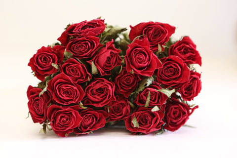 20 x Dried Rose Flowers - Real Dried Bouquet - Roses Valentine's Red - Real Drie - Paradise Crow -  Natural Design & Interiors