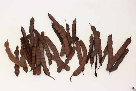 200g Bean Red Splitted  - Natural Floristy Supply - Bean pods - Seeds Nuts Botan - Paradise Crow -  Natural Design & Interiors