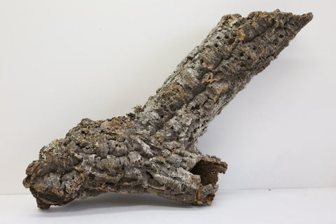 Large Cork Bark Trunk ( Hollow)  74cm x 30 cm - Natural Decoration - Tree Trunk - Paradise Crow -  Natural Design & Interiors