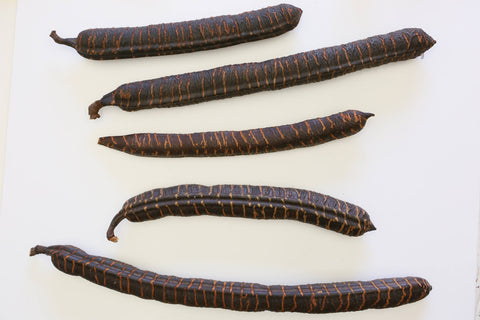 5 x XL Stick Fruit   - Natural Floristy Supply - Dried fruit  pods - Seeds Nuts - Paradise Crow -  Natural Design & Interiors