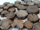 Mini Wooden Chesnut Tree Slices -250g - 2-5cm Light Wood Slices Natural Interiors - Paradise Crow -  Natural Design & Interiors