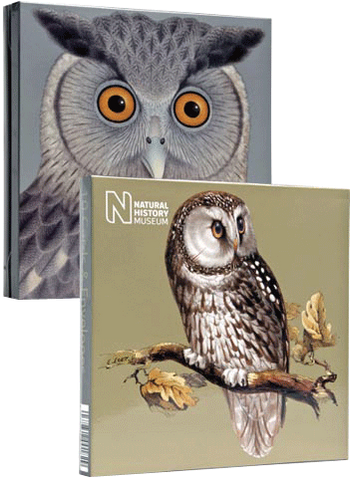 Natural History Museum Greeting Cards x 8 Cards - Owls - Paradise Crow -  Natural Design & Interiors