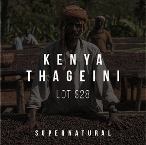 Kenya Thageini Lot S28 - Supernatural - Cloud Catcher Roastery