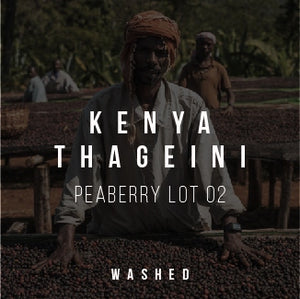 Kenya Thageini Peaberry Lot 02 - Washed - Cloud Catcher Roastery