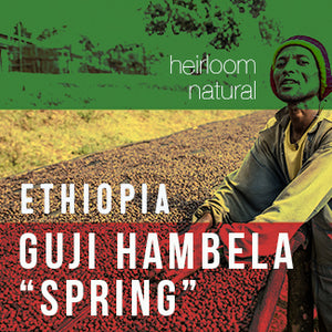 "Ethiopia GUJI HAMBELA ""Spring"" - Natural - Cloud Catcher Coffee Roastery"