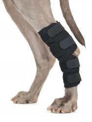 Back on Track Hock Brace - Boutique @ Guelph Animal Hospital