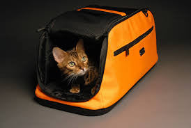 Sleepypod Air - Boutique @ Guelph Animal Hospital - 1