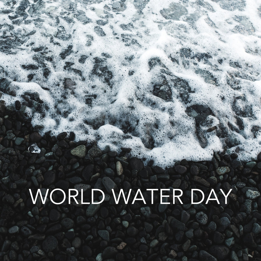 "Wave breaking on a rocky shore with the text ""World Water Day"""