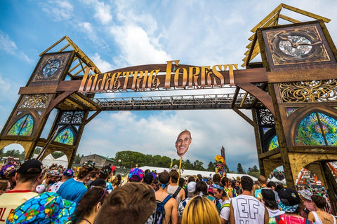 Electric Forest Music Festival 2015