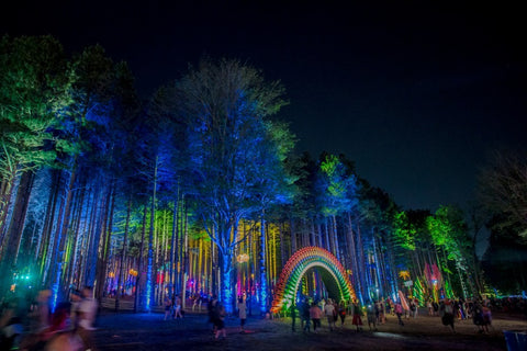 Electric Forest Music Festival - Top 15 Reasons You Are An EDM Fan
