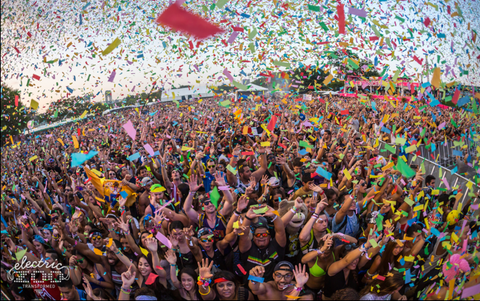 Electric Zoo Festival 2015