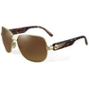 Sundog Valiant Sunglasses - BROWN/GOLD