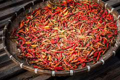 Drying Red Chili Peppers