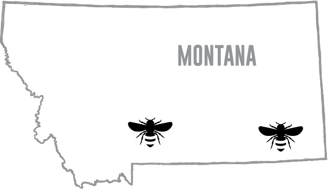 Our Montana Sweet Clover Honey is grown in Broadus and Big Timber, Montana.