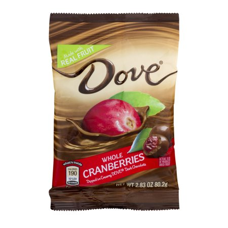 Dove Fruit Dark Chocolate With Whole Cranberries Snack Pouch, 17 oz