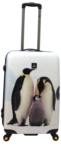 National Geographic Pingu Hardside 4-Wheel Suitcase (Medium)