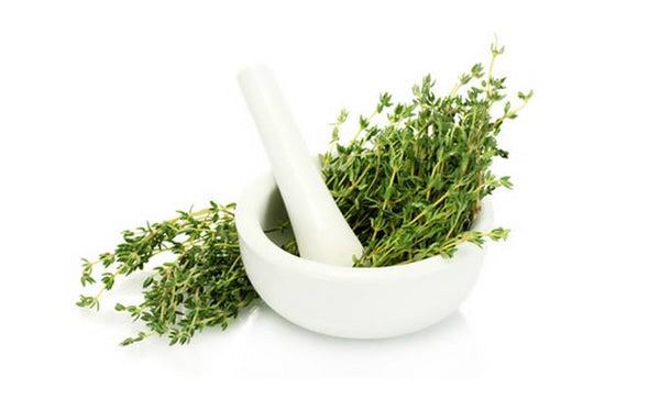 Thyme  (French)