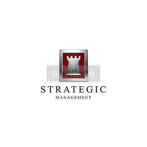 Strategic Management 3D Chess Logo 3D-571 - pixellogo