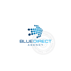 Blue Arrow Digital Programming Logo-1608
