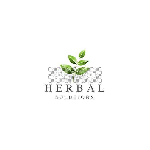 Herbal leaf branch logo - Green leaves on a branch | Logodive