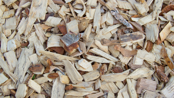What is the Benefit of Organic Mulch?