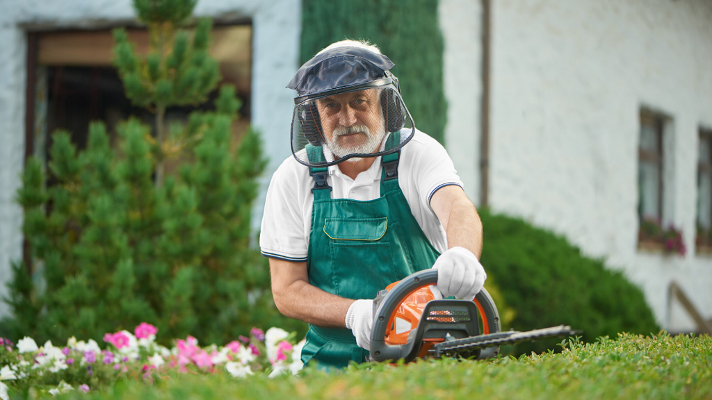 How to Hire a Professional Landscaper