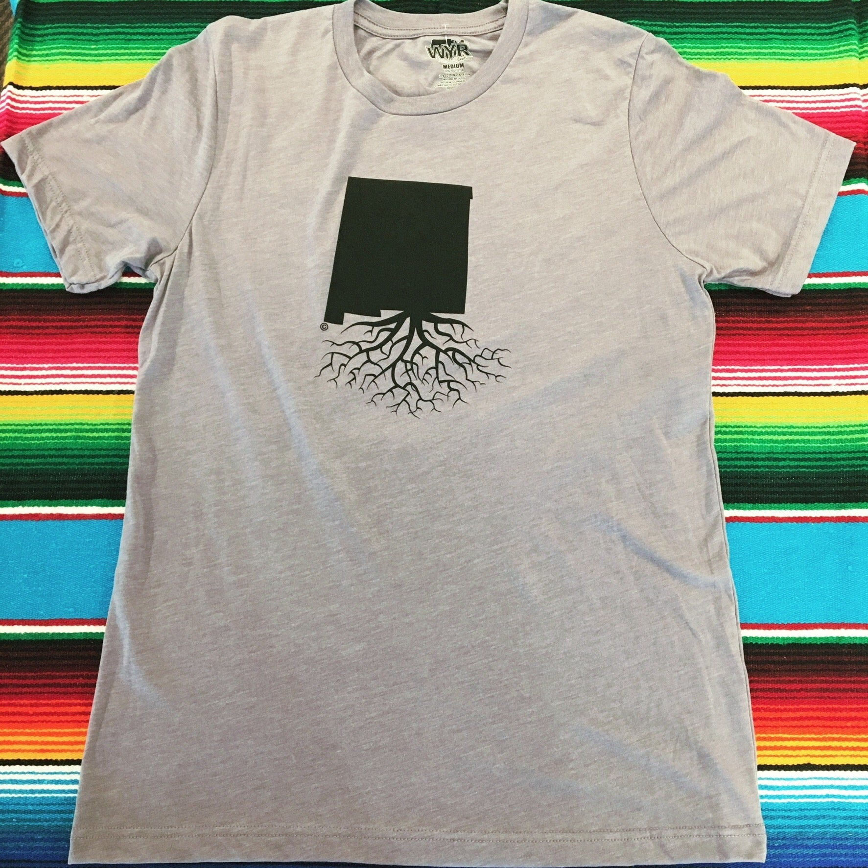 Men's Stone New Mexico Roots Tee