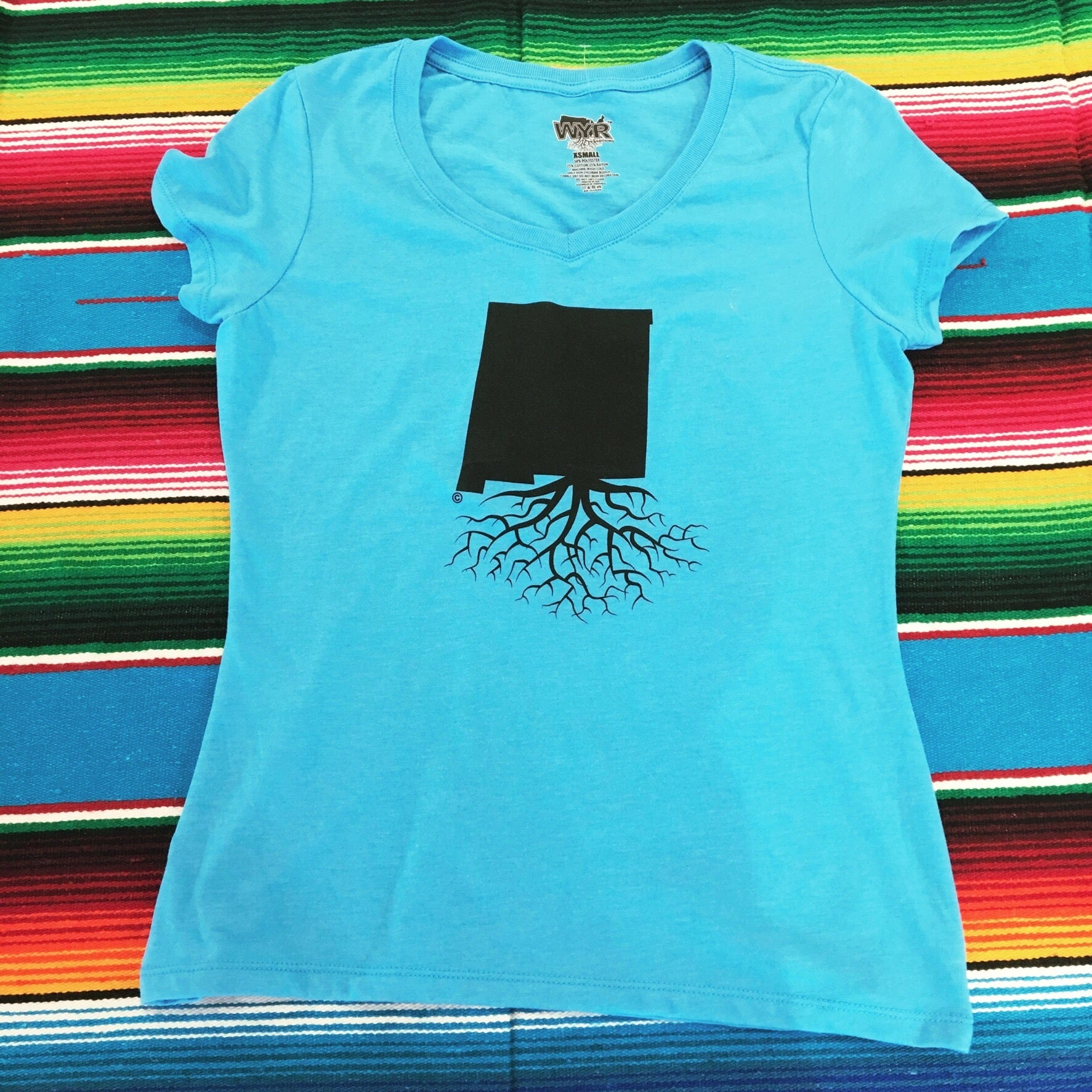 Women's Aqua Blue New Mexico Roots Tee