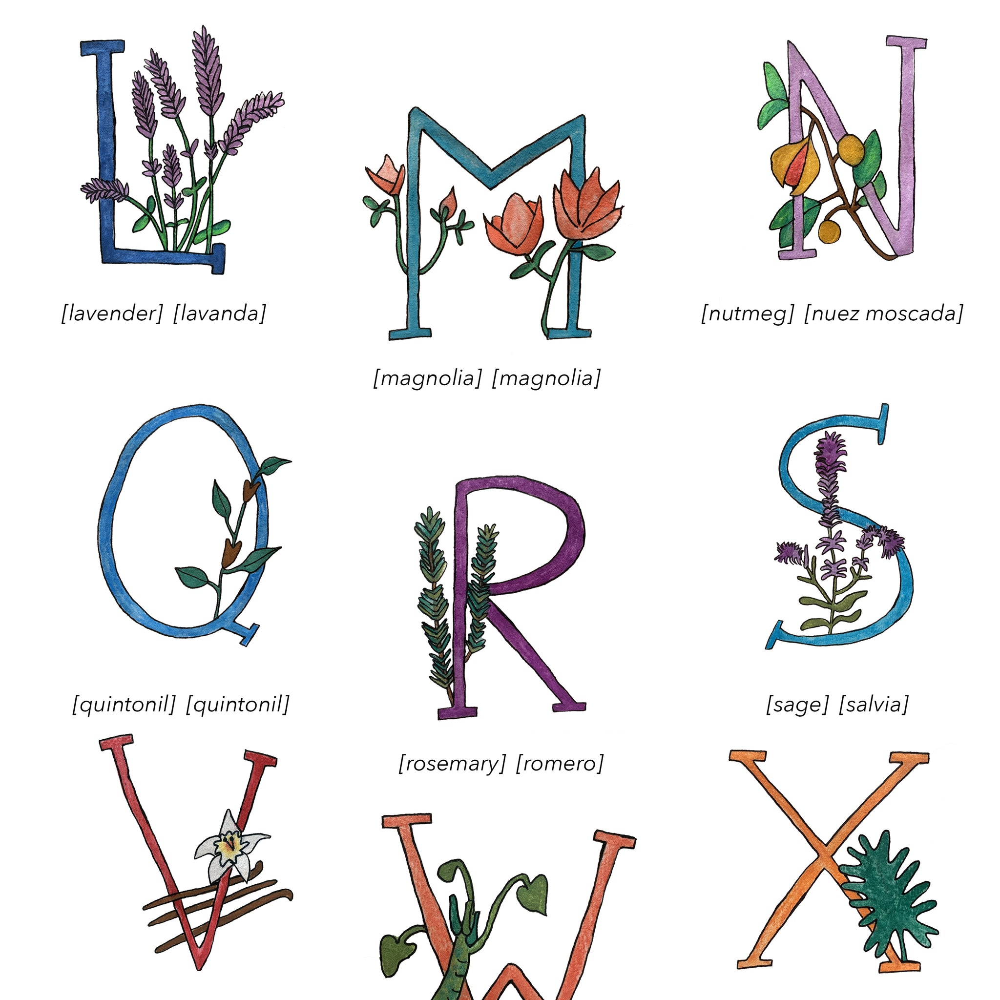 Bilingual English Spanish Herbs and Plants Alphabet Nursery and Kitchen Art Print