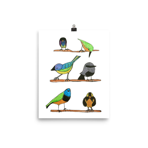 Birds Alphabet Nursery Art Print
