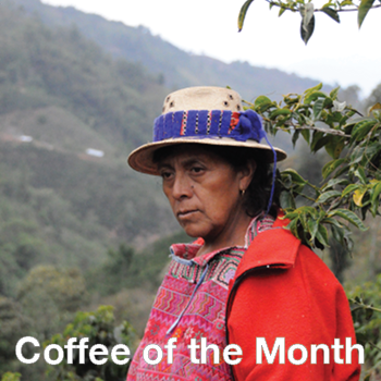 Coffee of the Month - El Quiche