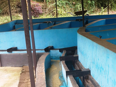 Wet Mill at the Abateraninkunga Cooperative