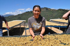 Celebrating Women Coffee Roasters