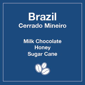 Brazil Cerrado Mineiro 12 oz Retail Bag for Resale (6 units minimum)