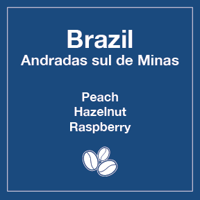 Brazil Andradas sul de Minas (Wholesale) - 16 oz Wholesale Bag / Whole Beans - Tico Coffee Roasters