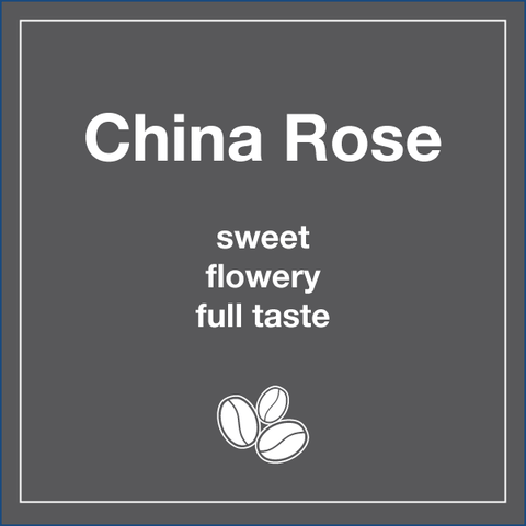 Black Rose (Wholesale) - Tico Coffee Roasters