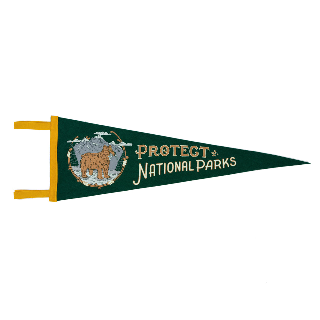 Protect National Parks Pennant