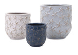 Starfish Earthenware Planters - Set of 3