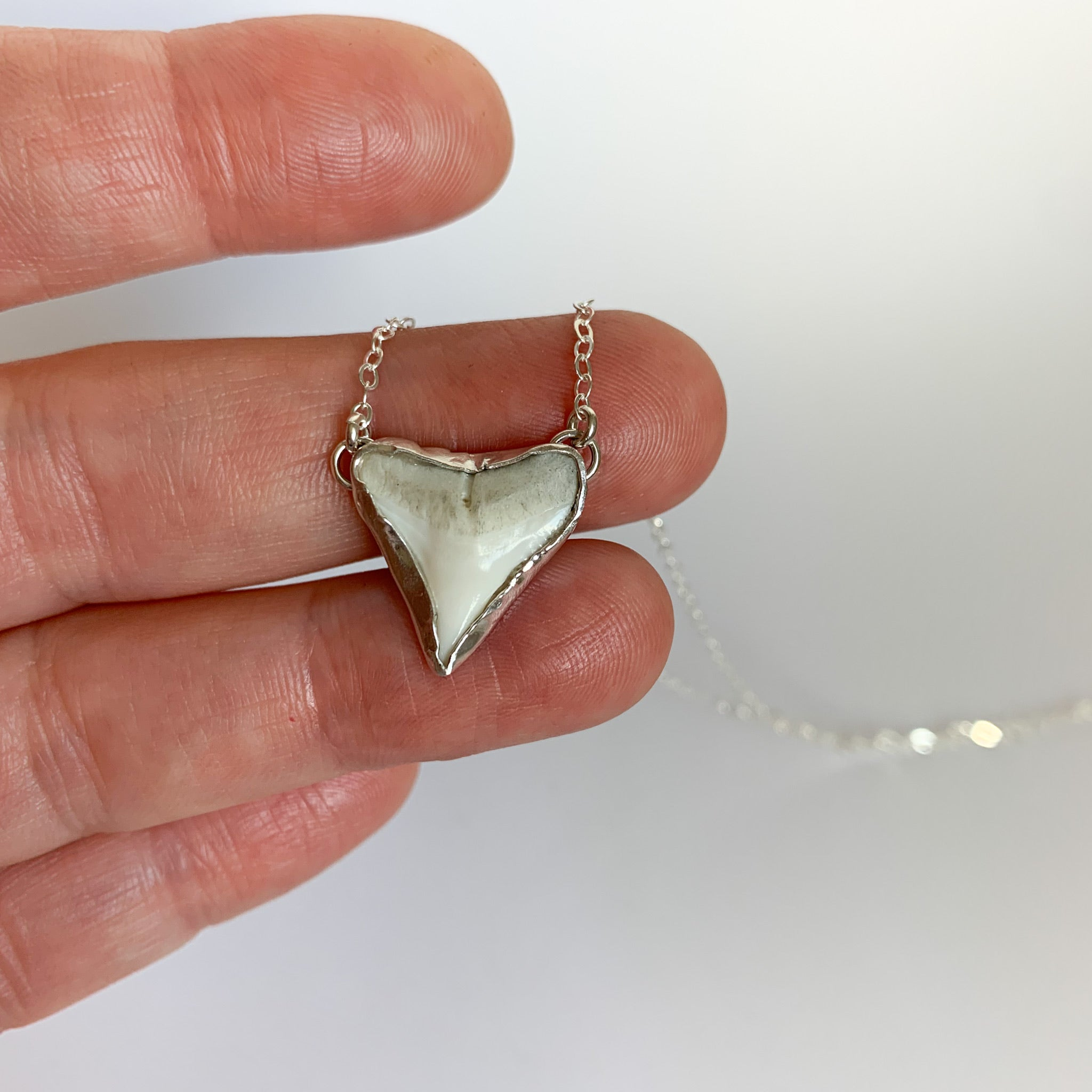 Shark tooth necklace - sterling silver - white