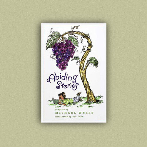Abiding Stories by Michael Wells