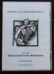 Sidetracked In The Wilderness Audio Book MP3
