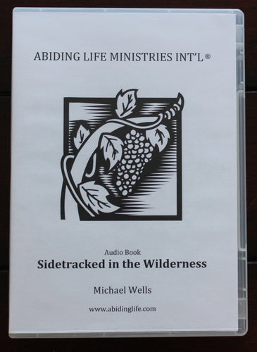 Sidetracked In The Wilderness Audio Book CD set