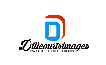 dillcourtsimages