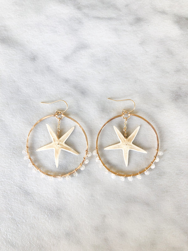 Kira Hawaii - Starfish Hoop Earrings, Jewelry at Kira Hawaii